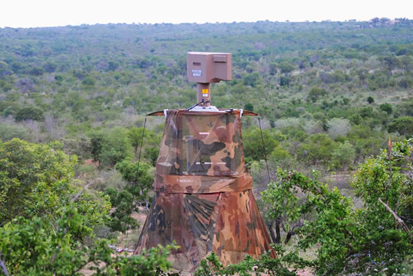 Radars used to protect rhinos in Kruger National Park